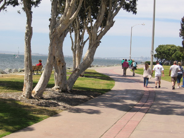 Walking slowly through sunshine, on the way to a cool festival in San Diego's South Bay.