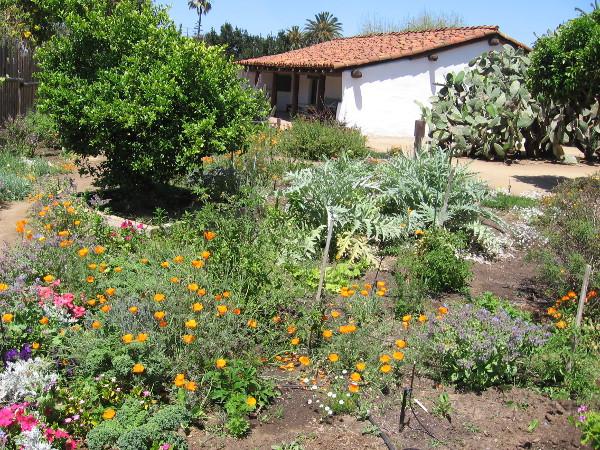 Many flowers fill a garden that few visitors see behind La Casa de Machado y Stewart.