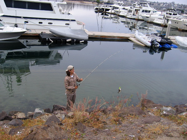 On the bright side, this friendly guy caught some fish at one of the beautiful Harbor Island marinas.