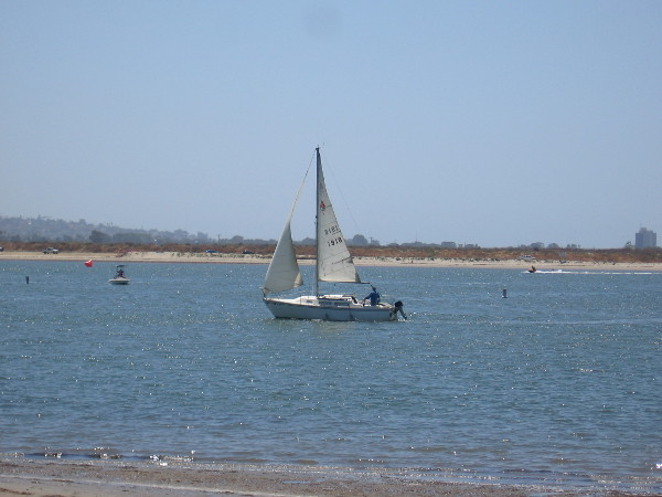 A sailboat in a corner of gentle blue Mission Bay, the largest man-made aquatic park in the United States.