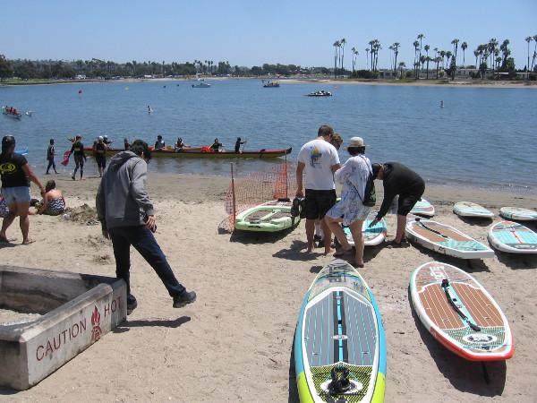 Some stand up paddle boards are ready on the sand.