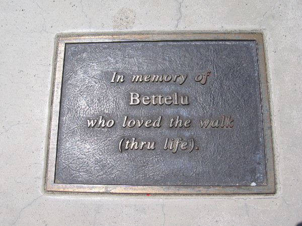 Plaque on a park bench. In memory of Bettelu who love the walk (thru life).