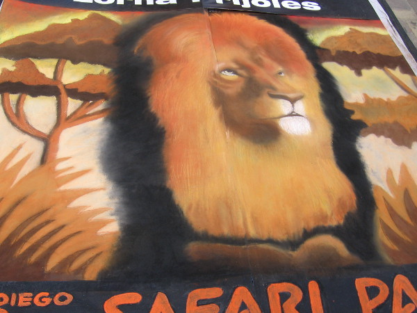 A chalk art lion representing the San Diego Zoo Safari Park, created by Lorna Prijoles.