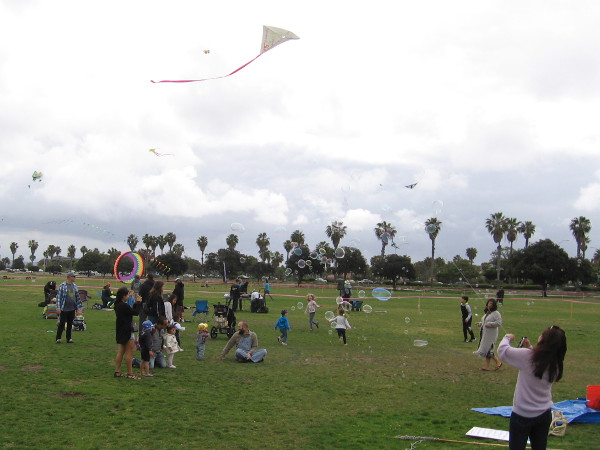 Dozens of kites take to the sky at the 70th Annual Kite Festival in Ocean Beach!