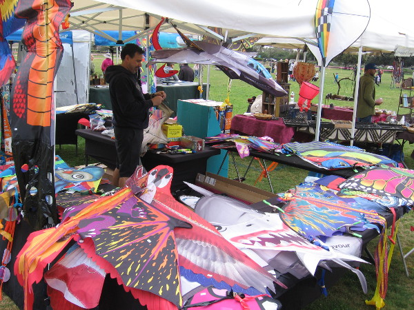 Among a variety of festival participants were some clever vendors who conveniently sold kites!