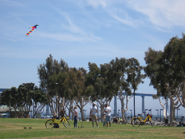 A spring day in San Diego that feels a whole lot like summer.