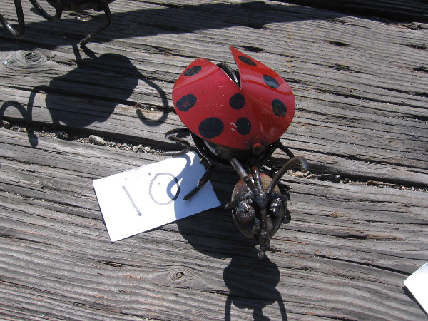 My goodness! A large lady bug has landed nearby!