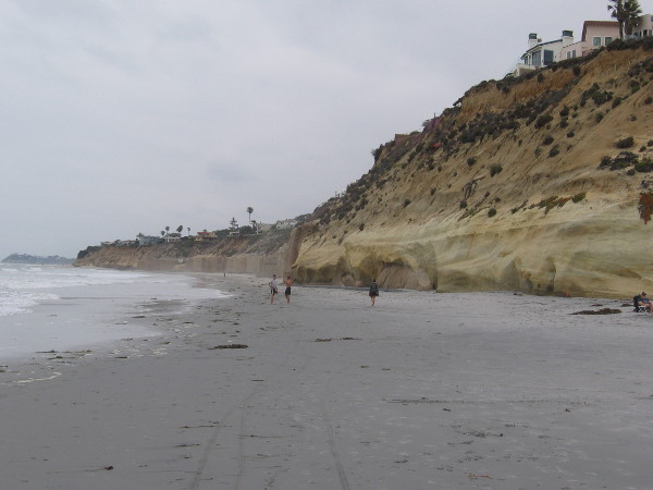 I wandered down to Fletcher Cove and looked north along the cliffs. Not many people were on the beach this overcast, slightly chilly day.