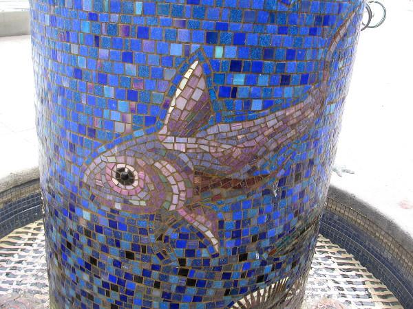 A graceful fish.