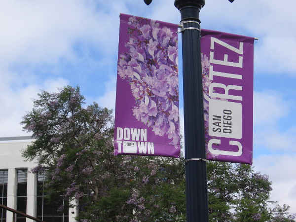 Colorful new banners have recently appeared around Cortez Hill. Very cool!