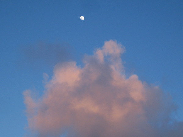 A bright moon above tinted clouds.