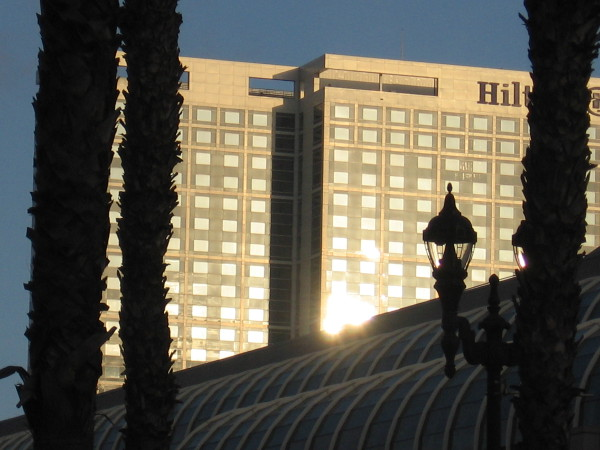 Sunlight on the side of the Hilton San Diego Bayfront.