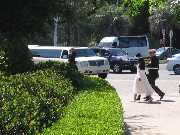 A dapper Marine and his new bride head for a stretch limousine in Balboa Park.