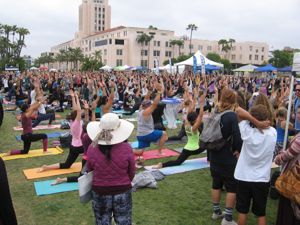 Hundreds turn out for the Festival of Yoga in Waterfront Park by the County Administration Building.