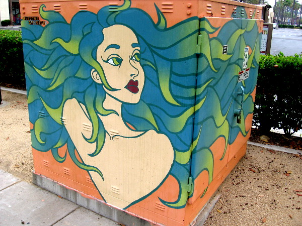 A beautiful face watches motorists from an electrical box. Street art at Rio Vista in Mission Valley.