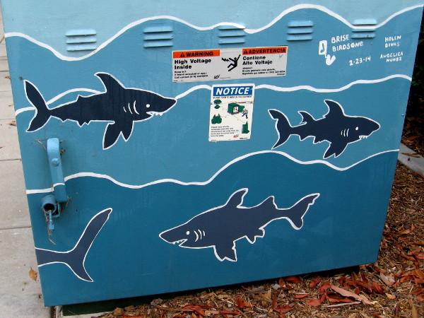Shark street art, with credits to Brise Birdsong, Helen Divas, Angelica Nunez.