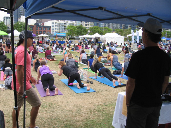 Lots of booths were around the central grassy area. Colorful yoga mats were everywhere.