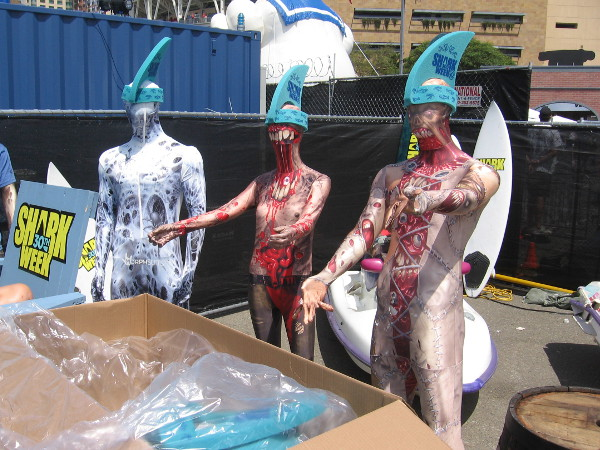 Some tasty bloody zombies that will be fed to Sharkzilla later in the day.