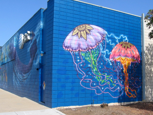 One side of the AT&T building at 13th Street has colorful, spiritual jellyfish that seem to communicate electrically!