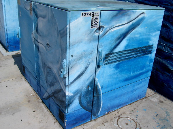 A pod of dolphins swims across an electrical box.