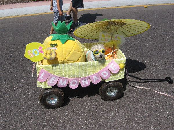Even this funny pooch in a wagon was selling lemonade!