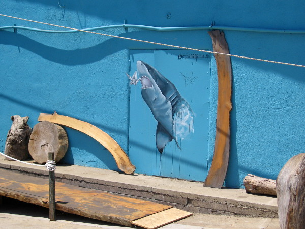 Shark painted on wall by Ol' Fashioned Lumber.
