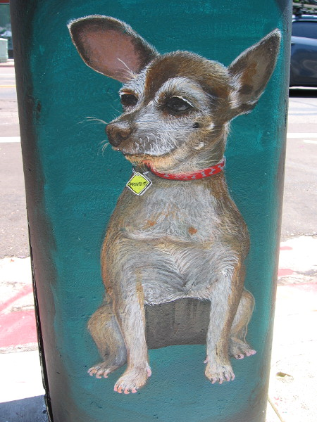 Street art of Princess, an actual dog who lives at a nearby house!