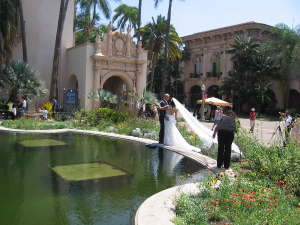 Wedding photos are taken at one end of the beautiful Lily Pond, or reflecting pool.