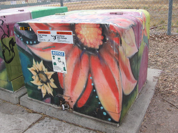 Beautiful flowers painted on a transformer box.