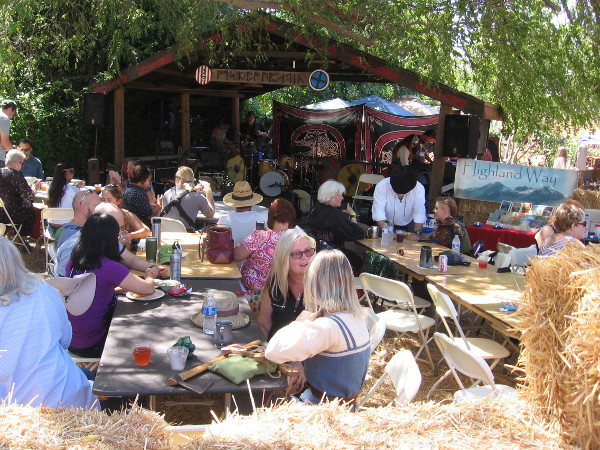 Food and entertainment are plentiful at the Annual Viking Festival.