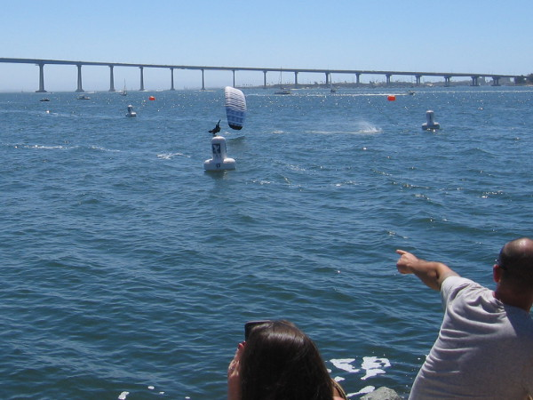 Someone watching the Swoop Freestyle FAI World Championship on San Diego Bay points to a contestant skimming across the water!