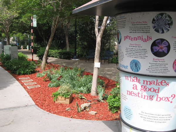 A small section of Tweet Street Park near Eighth Avenue and Date Street which has been improved recently.