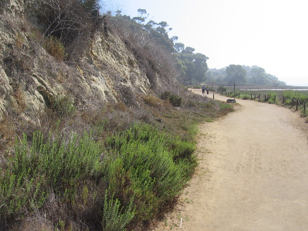 Part of the Lagoon Trail follows tan sandstone cliffs.