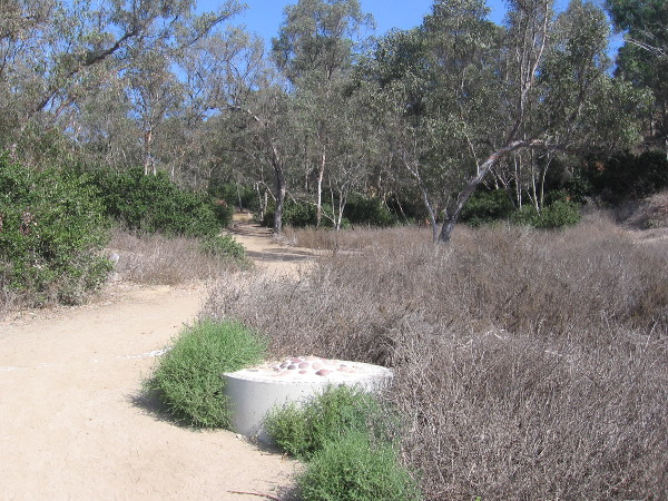Several short trails head north from the main trail into nearby Carlsbad neighborhoods.