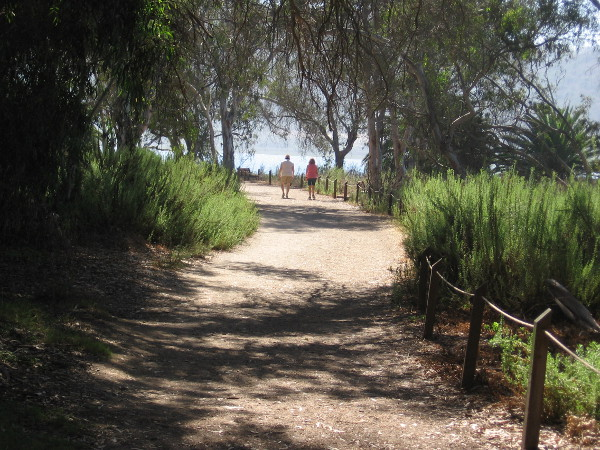 Walking along a beautiful trail in coastal San Diego County.