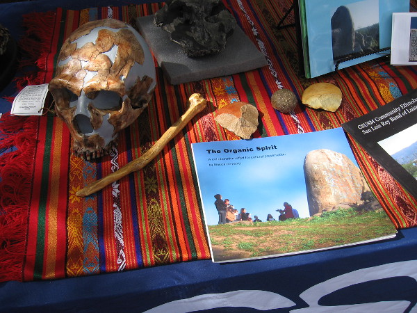 A friendly student at this table talked to visitors about the California State University San Marcos Anthropology Club.