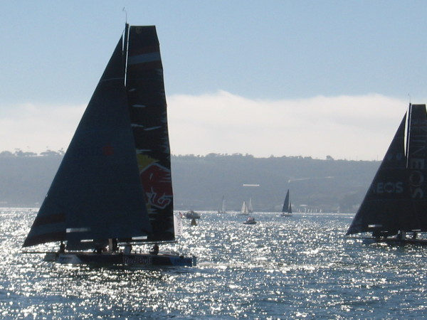 They've navigated around a race mark buoy and are coming back downwind.