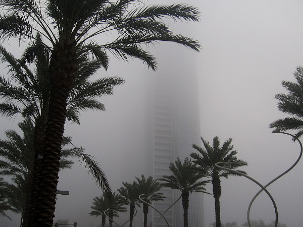 The tall Pacific Gate building rises through the gray fog in downtown San Diego.