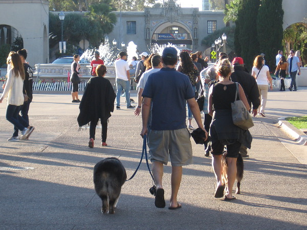 A busy Sunday afternoon in Balboa Park. There is much living to do.