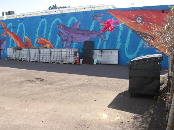 Wall painted by New Zealand artist Cinzah for the PangeaSeed Foundation informs passersby that each year 100,000,000 sharks are killed for their fins.