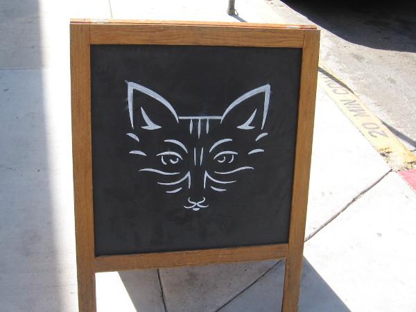 Abstract cat on a sidewalk chalkboard.