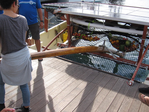 Everyone had to check out the huge oar-like rudder.