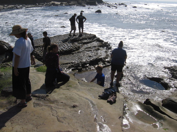 Visitors to Cabrillo National Monument investigate the tidepools.