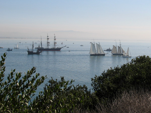 155 year old Star of India and its companion tall ships sail across the water on an historic weekend in November, 2018.