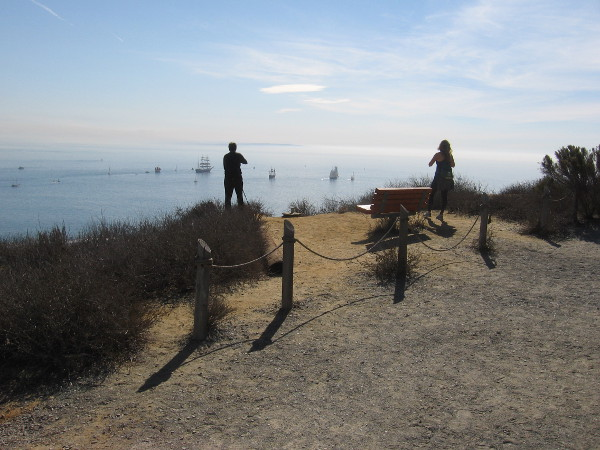 People enjoy the magic near a bench on the Bayside Trail.