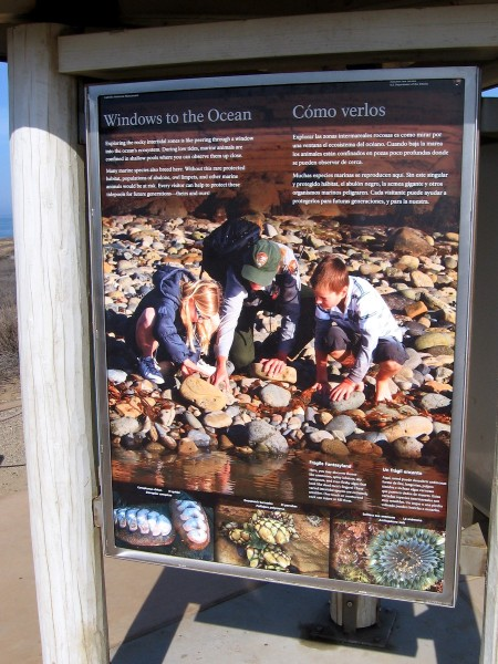 A sign by the path. Exploring the rocky intertidal zones is like peering through a window into the ocean's ecosystem. During low tide, marine animals in shallow pools can be closely observed.