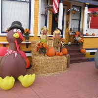 House in Little Italy celebrates Thanksgiving!