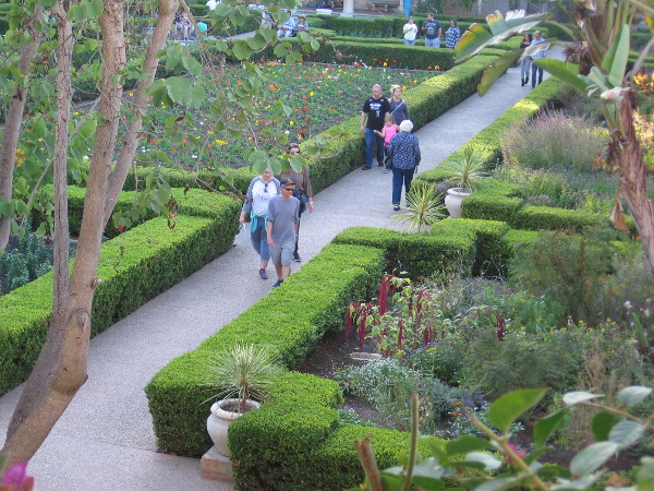Gazing down upon the dreamy Alcazar Garden.