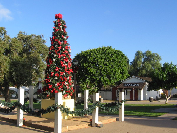 The annual Christmas tree has appeared near the flagpole at the center of Old Town's historic plaza.