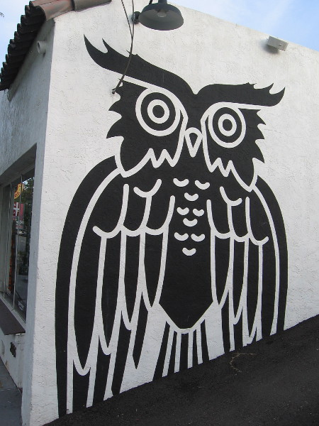 An owl watches over India Street.